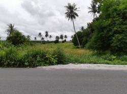 ขาย ที่ดิน 24 ไร่ พื้นที่ม่วงลาย เหมาะทำโรงงาน ซอย 11 ใกล้ถนนทางหลวงหมายเลข 36 อ.นิคมพัฒนา จ.ระยอง