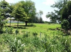 ขายที่ดิน สี่แยกบ้านค่าย อำเภอนิคมพัฒนา จังหวัดระยอง